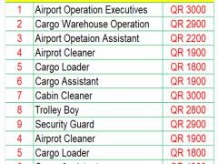 Cargo Network Automation Officer || Qatar Airways