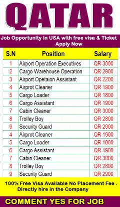 Cargo Network Automation Officer    Qatar Airways