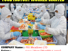 Factory Worker Job in Canada For the Foreigner