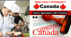 Work permit in Canada | Government job Canada | Cook jobs Canada