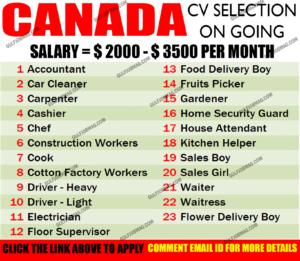 field supervisor Canada